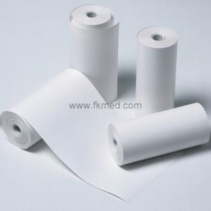 Boîte de 10 rouleaux de papier thermique pour imprimante Able AP1300